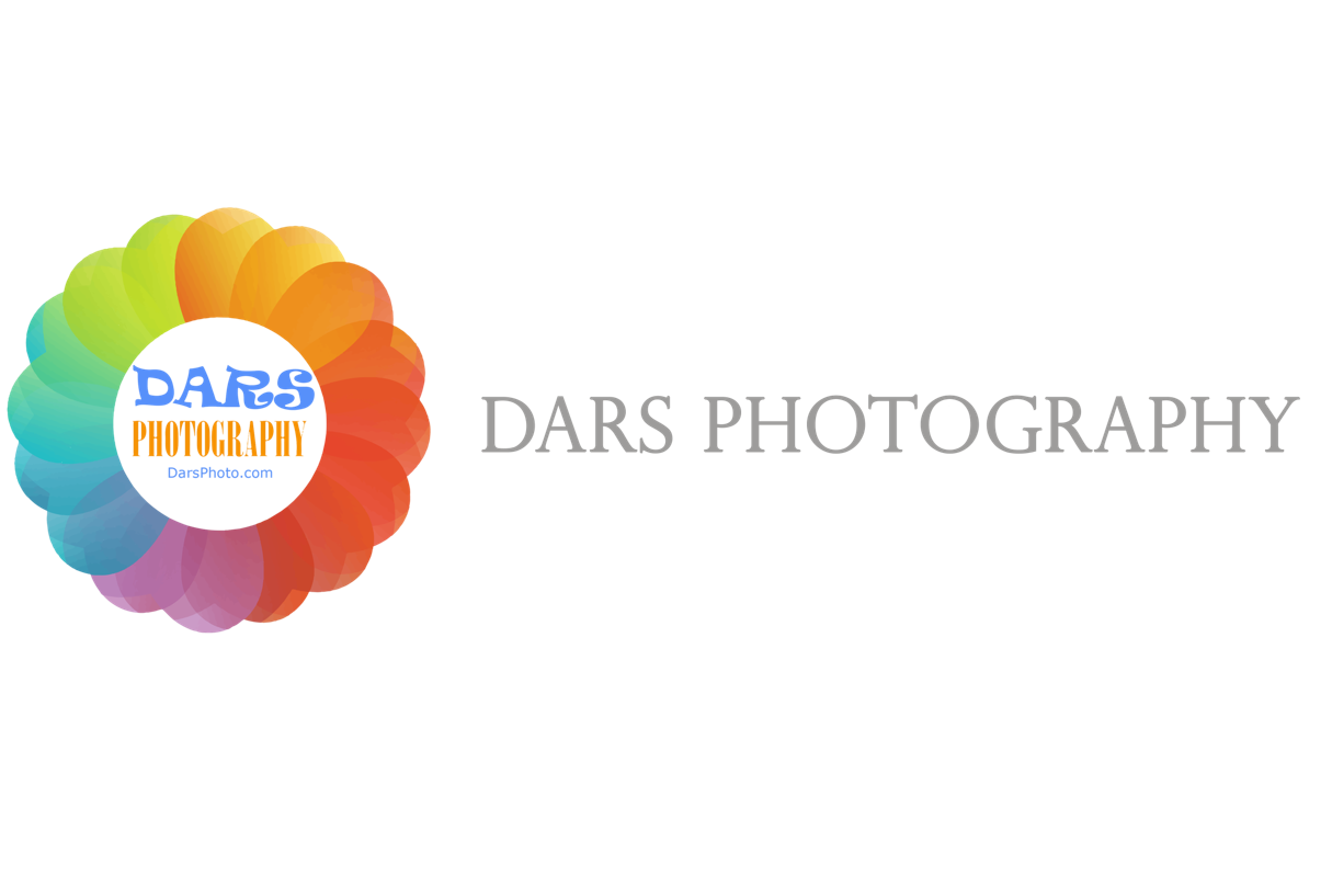 DARS Photography-Chicago American & Indian Wedding Photographer
